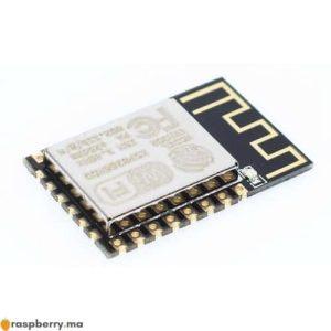 Module WiFi ESP 12F Esp8266 1