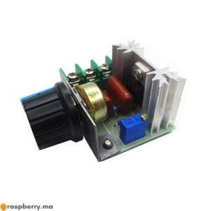 Convertisseur AC AC Gradateur 220V 2000W 1