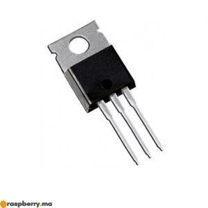 Transistor MOSFET Haute Puissance 195A 40 V IRLB3034